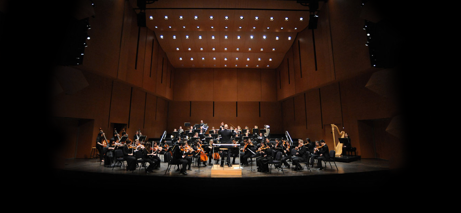 image for Bard College Conservatory Orchestra