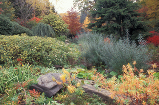 [Gardening with Native Plants]
