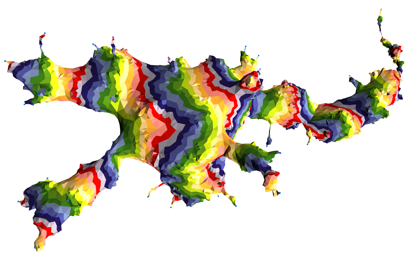 [Visualizing Quantum Gravity:A pictorial introduction to causal dynamical triangulations]