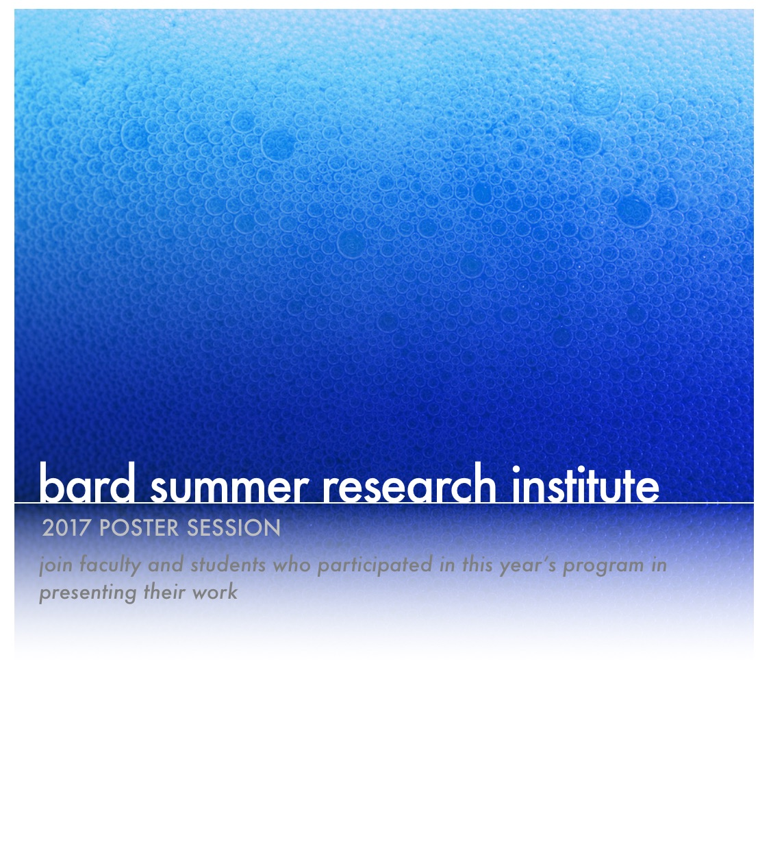 [Bard Summer Research Institute Poster Session]