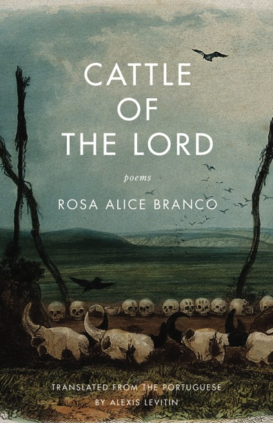 [Cattle of the Lord]