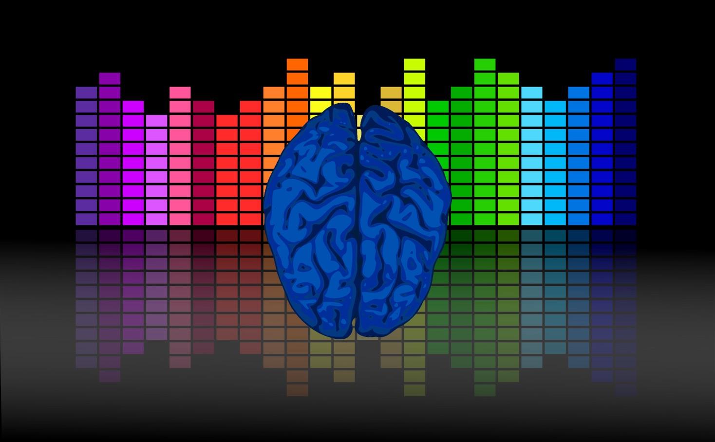 [The Musical Brain]