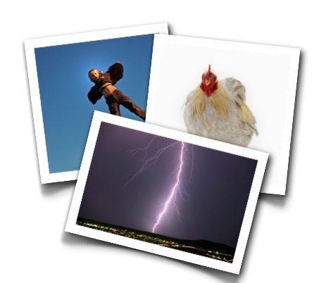 [Flying Boys, Defibrillated Chickens, and Death By Lightning: A Brief History of Electricity and Magnetism]