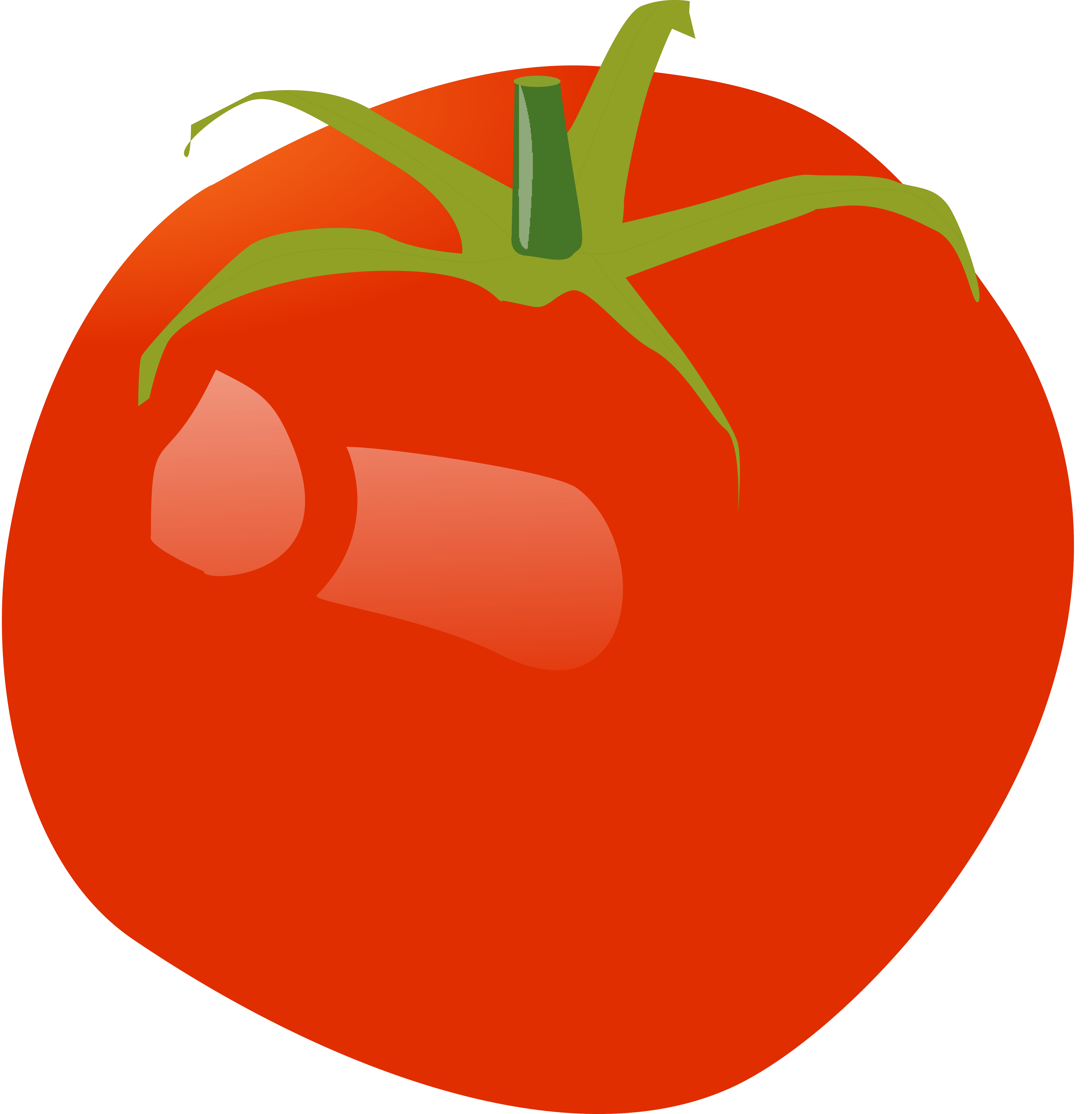 [How to Make a Tomato: Comparative Fruit Development in the Nightshade Family]