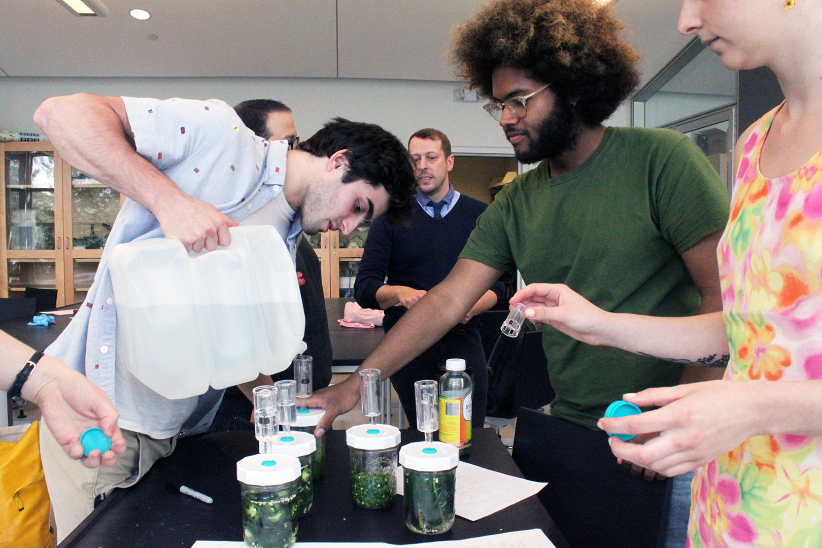 Food Microbiology: Cider Making